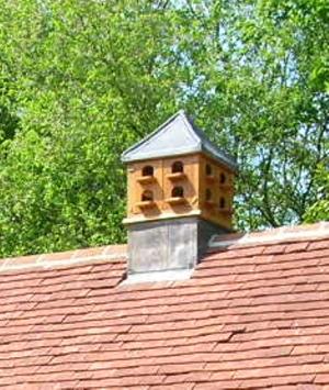 Dovecote roof